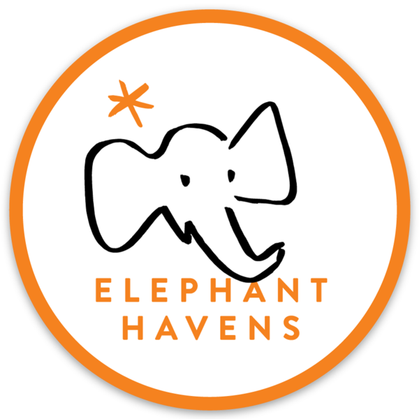 Elephant Havens Logo Decal