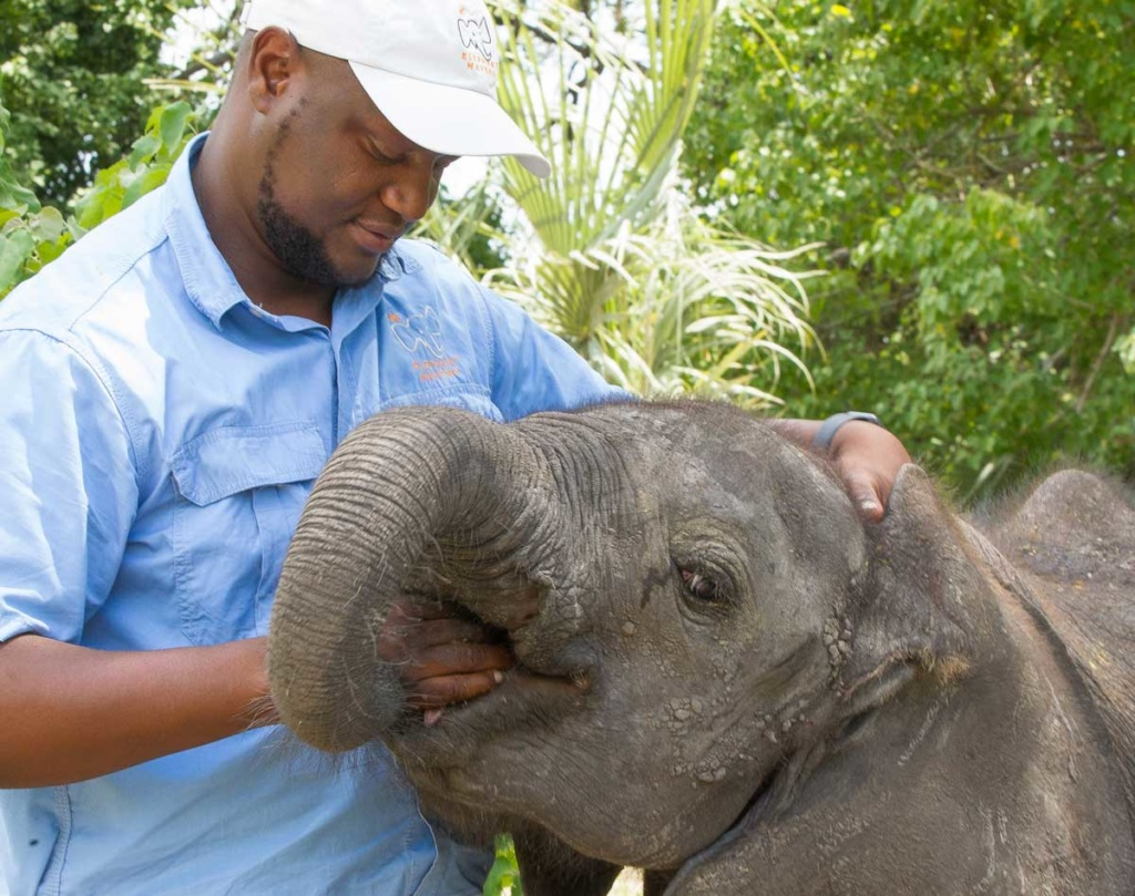 Elephant Havens handler and baby
