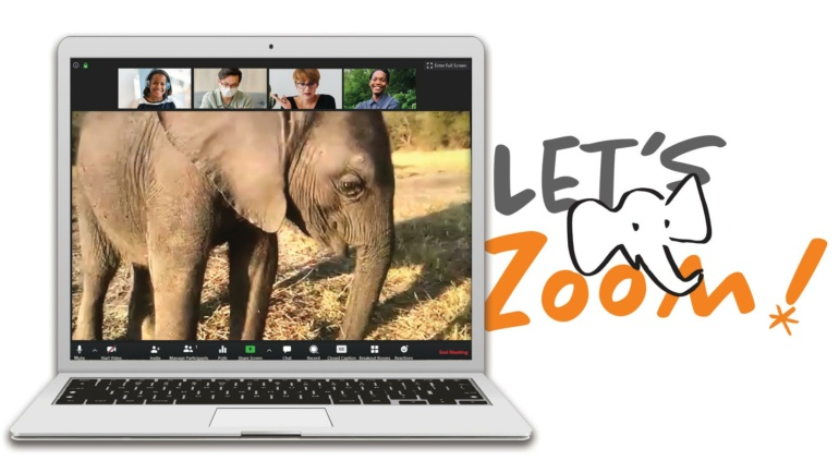 Leadership NH Fundraiser for Elephant Havens in Botswana – Live Tour & Visit w/the Baby African Elephants